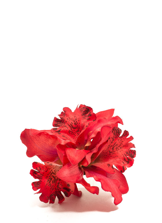 Orchid Bundle Hair Accessory RED